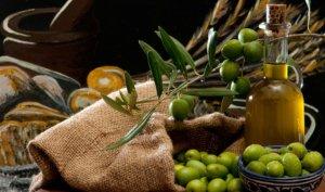 Huile d'olive des Cévennes